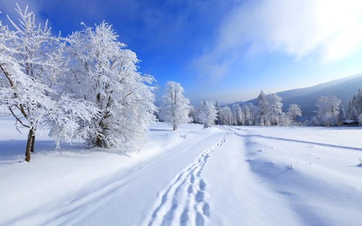 eine schneebedeckte Winterlandschaft